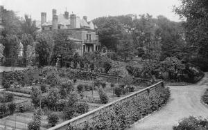 Ross_gardens_behind_Peel_Street_Montreal_1926-27_705px